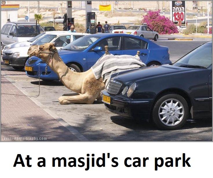 22_6_16_funny-1 muslim joke