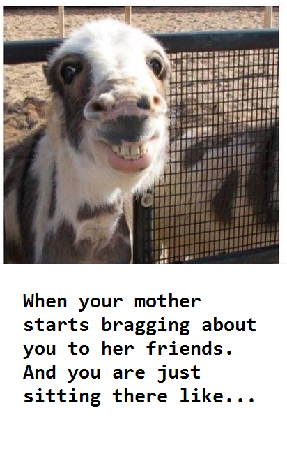 funny 1