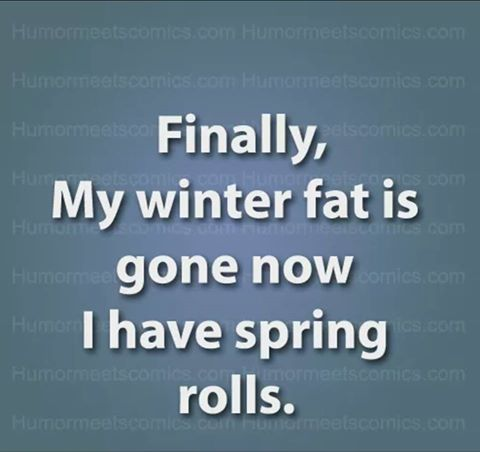 winter fat and spring rolls