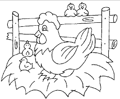 chicken and chicks coloring page_2