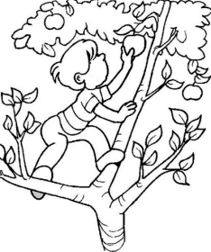 boy-in-an-apple-tree-2